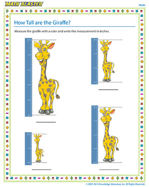 how tall are the giraffe kindergarten measurement worksheets math blaster. Black Bedroom Furniture Sets. Home Design Ideas